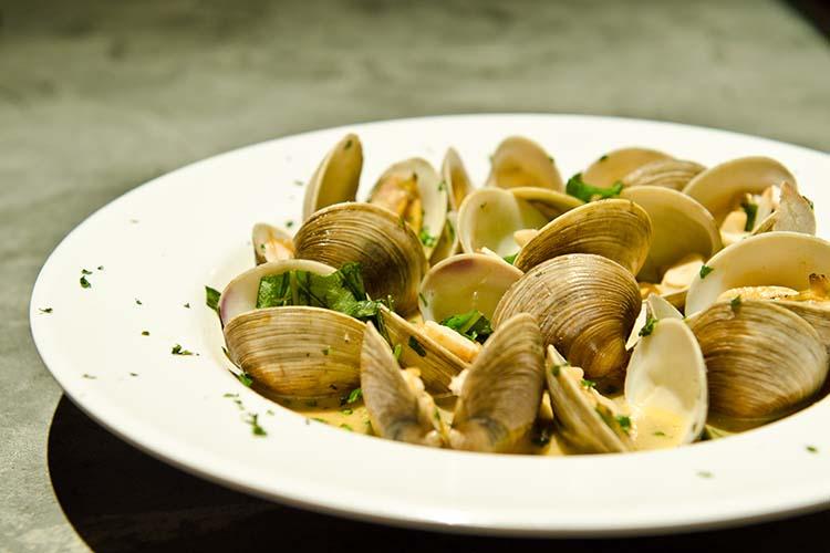 500 x 750-clams